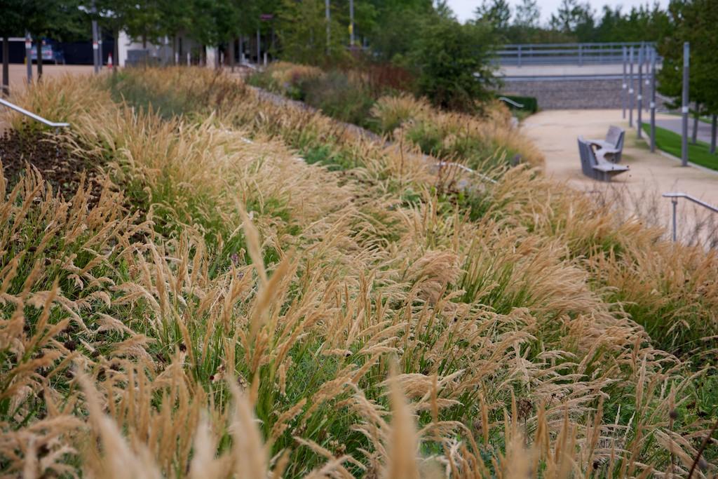 Olympic Park Europe Garden September